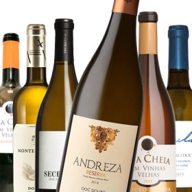 Douro Weißwein PROBIERPAKET