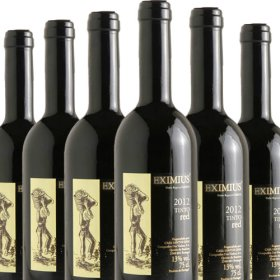 6 Flaschen Angebot Eximius Tinto